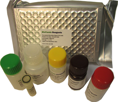 Hardjo IgM/IgG ELISA kit
